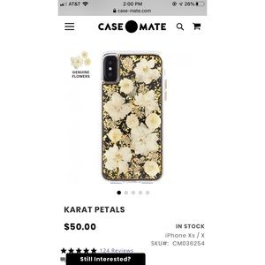 iPhone X and Xs Gold and Dried Floral Phone Case